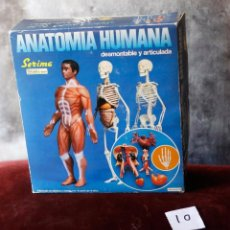 Juegos educativos: ANATOMIA HUMANA SERIMA. Lote 59152180