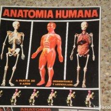 Juegos educativos: ANATOMIA HUMANA , SERIMA ( ESPAÑA ) CAJA ORIGINAL DE LOS AÑOS 70 . EQUIPO Nº 2 . LEAN DESCRIPCION. Lote 104013319