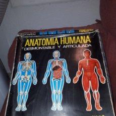 Juegos educativos: ANATOMIA HUMANA 1:5 DE SERIMA AÑOS 70 COMPLETO. Lote 130347330
