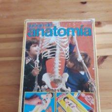 Juegos educativos: JUEGO DE ANATOMIA EDUCA COMPLETO 96 TARJETAS 6 TABLEROS 12 FICHAS. Lote 161105013