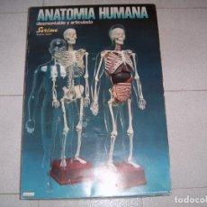 Juegos educativos: ANATOMIA HUMANA. Lote 178936422