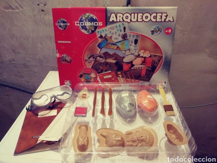 JUEGO MESA ARQUEOCEFA (Juguetes - Juegos - Educativos)