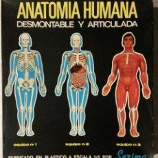 Juegos educativos: ANTIGUOS JUEGOS ANATOMIA HUMANA Nº 1 Y Nº 2. Lote 193556016