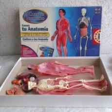 Juegos educativos: EL CUERPO HUMANO - CONOCE TU ANATOMIA - EDUCA -INCOMPLETO. Lote 193918105