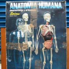 Juegos educativos: ANTIGUO JUEGO DE ANATOMÍA HUMANA DE SERIMA.NO ESTÁ COMPLETO. Lote 196538966