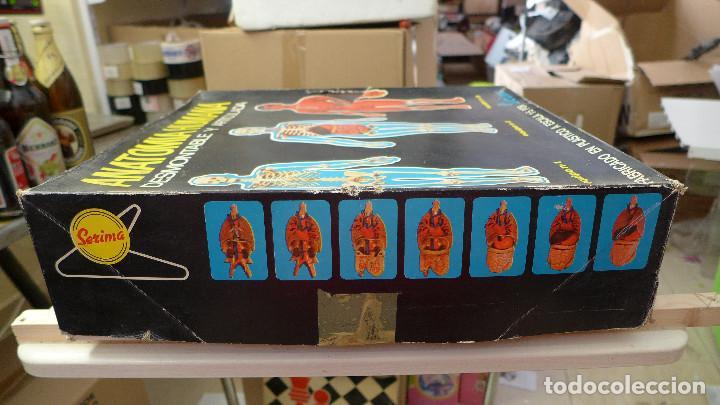 Juegos educativos: ANATOMIA HUMANA DESMONTABLE Y ARTICULADA EQUIPO Nº 4 DE SERIMA NUEVO SIN USAR - Foto 6 - 196662476