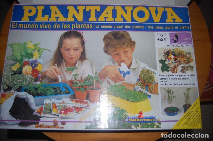 CAJA VACÍA DEL JUEGO PLANTANOVA. (Juguetes - Juegos - Educativos)