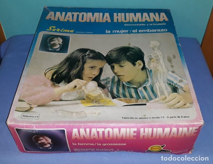 ANTIGUA CAJA GRANDE LA MUJER EL EMBARAZO ANATOMIA HUMANA DE SERIMA COMPLETO ORIGINAL (Juguetes - Juegos - Educativos)