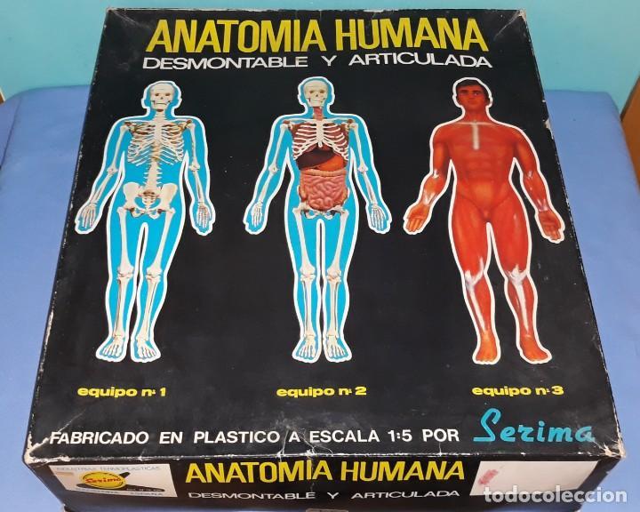 ANTIGUA CAJA GRANDE ANATOMIA HUMANA CON LOS TRES EQUIPOS DE SERIMA ORIGINAL AÑOS 70 (Juguetes - Juegos - Educativos)