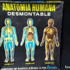 Juegos educativos: ANATOMIA HUMANA SERIMA, EQUIPO N 1 ESQUELETO - AÑOS 60. Lote 222145666