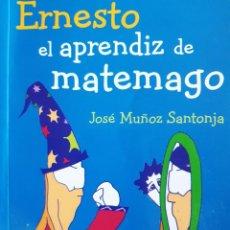Juegos educativos: ERNESTO EL APRENDIZ DE MATEMAGO JOSE MUÑOZ SANTONJA NIVOLA 2010 JUEGOS MATEMATICOS. Lote 257557850
