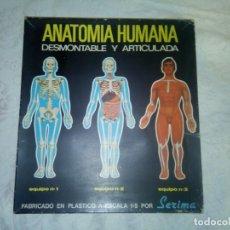 Juegos educativos: ANATOMIA HUMANA DE SERIMA. COMPLETO. Lote 293353498