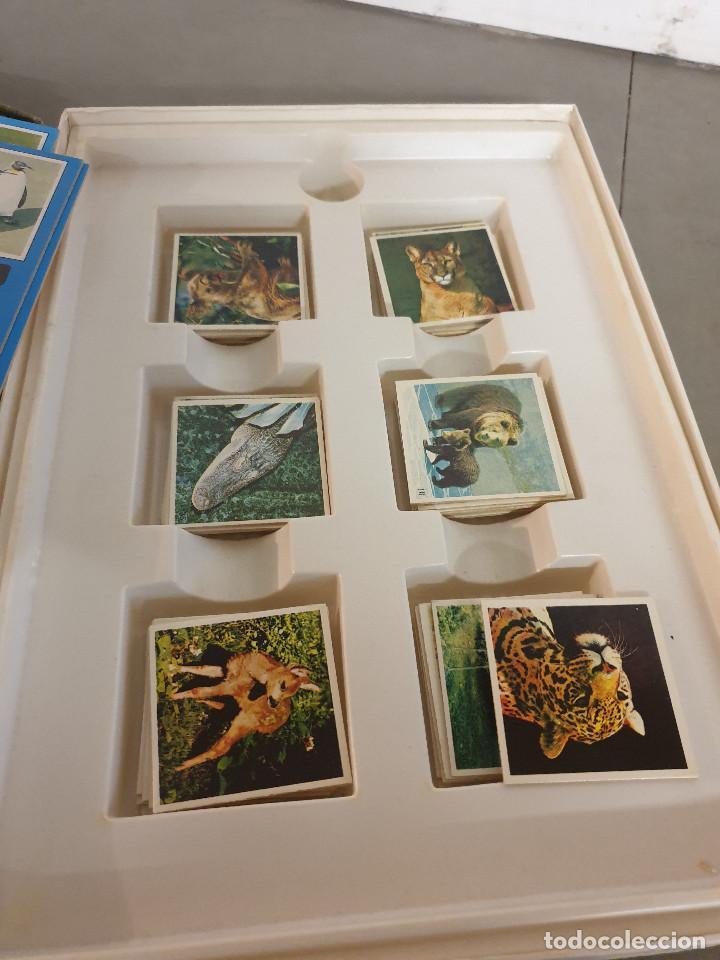 Juegos de mesa: JUEGO MESA EL GRAN JUEGO DE ANIMALES - Foto 5 - 253353225