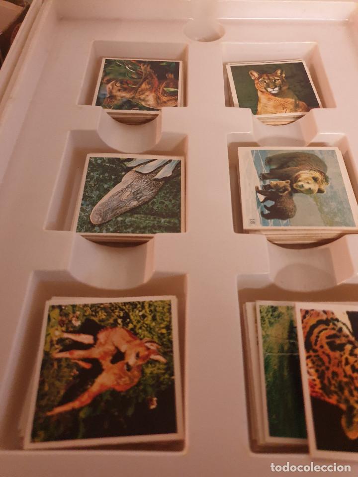 Juegos de mesa: JUEGO MESA EL GRAN JUEGO DE ANIMALES - Foto 6 - 253353225