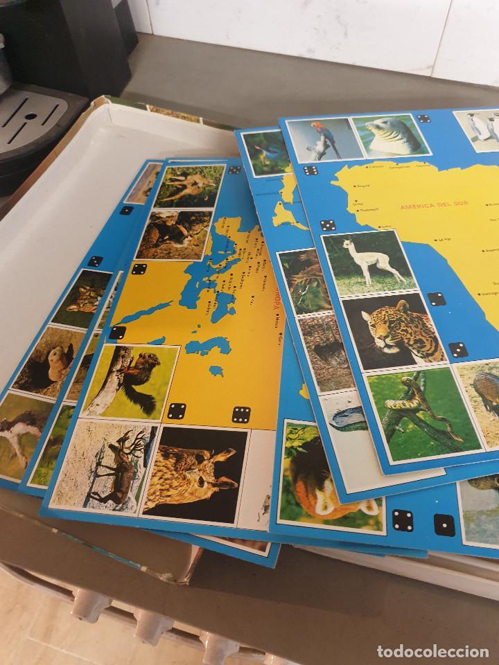 Juegos de mesa: JUEGO MESA EL GRAN JUEGO DE ANIMALES - Foto 8 - 253353225
