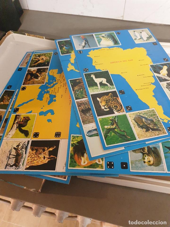 Juegos de mesa: JUEGO MESA EL GRAN JUEGO DE ANIMALES - Foto 9 - 253353225