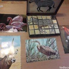 Juguetes antiguos y Juegos de colección: ROMPECABEZAS MAXIMS ANIMALES 25 CM CAJA DOBLADA. Lote 162445317