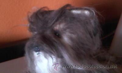 Juguetes Antiguos: Antiguo perro yorkshire de peluche ojos de cristal. 1965. KAMAR JAPAN - Foto 5 - 37772782