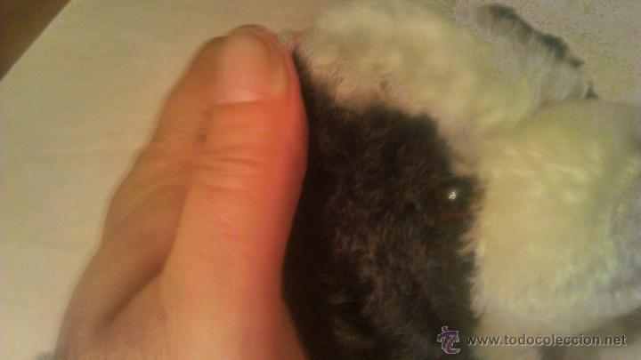 Juguetes Antiguos: PRECIOSO perrito BEA NATURA BEA-TOYS SWITZERLAND 100% MOHAIR.AÑOS 50 - Foto 2 - 53709365