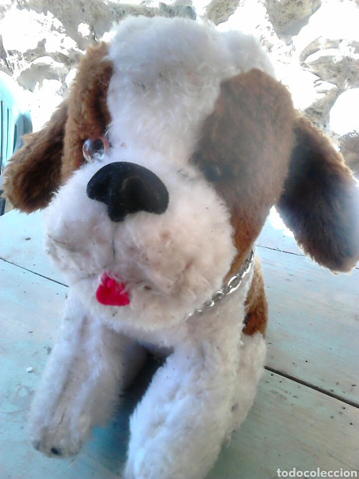 Juguetes Antiguos: Viejo peluche,de un perro,de 25 cm alto,aproximado, ver fotos - Foto 2 - 86993762
