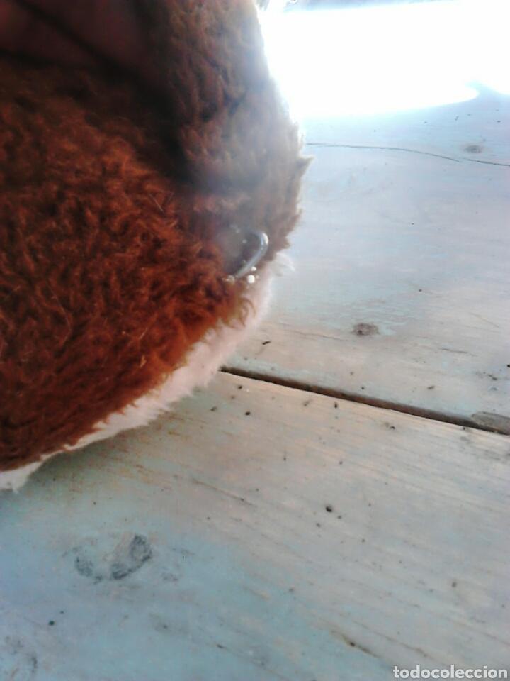 Juguetes Antiguos: Viejo peluche,de un perro,de 25 cm alto,aproximado, ver fotos - Foto 4 - 86993762