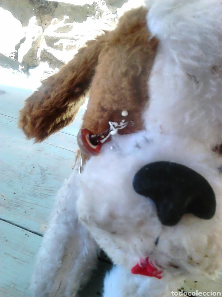 Juguetes Antiguos: Viejo peluche,de un perro,de 25 cm alto,aproximado, ver fotos - Foto 5 - 86993762