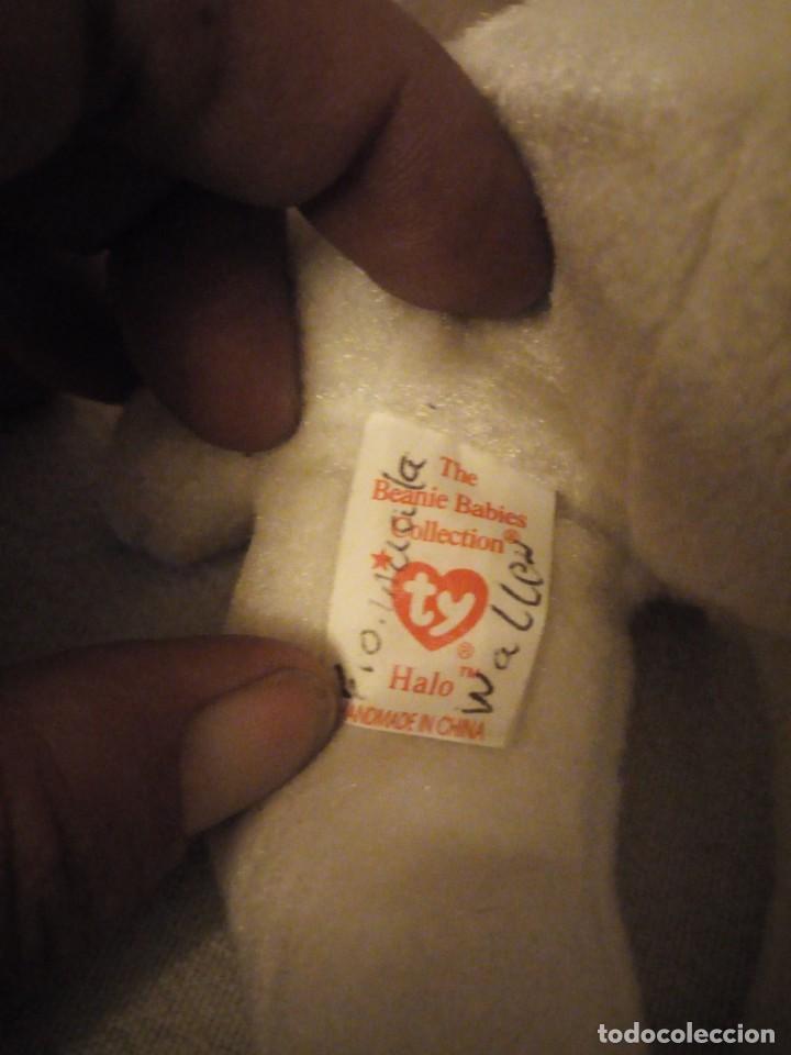 Juguetes Antiguos: oso alado the beanie babies collection. 1998 - Foto 4 - 151878890
