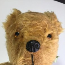 Juguetes Antiguos: TEDDY BEAR , OSO DE PELUCHE 52 CM. CON SONIDO . Lote 166507870