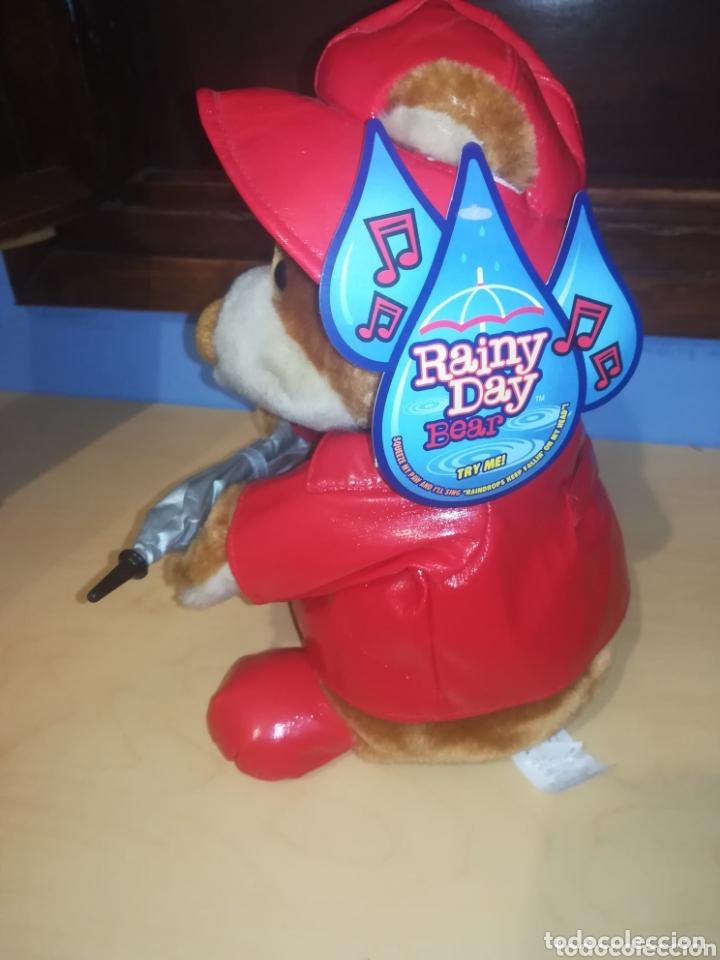 Juguetes Antiguos: Oso de Peluche Rainy Day Bear, innovage Inc. año 2004 - Foto 2 - 173532093