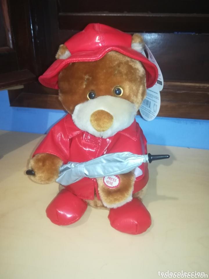 OSO DE PELUCHE RAINY DAY BEAR, INNOVAGE INC. AÑO 2004 (Juguetes - Ositos & otros Peluches)
