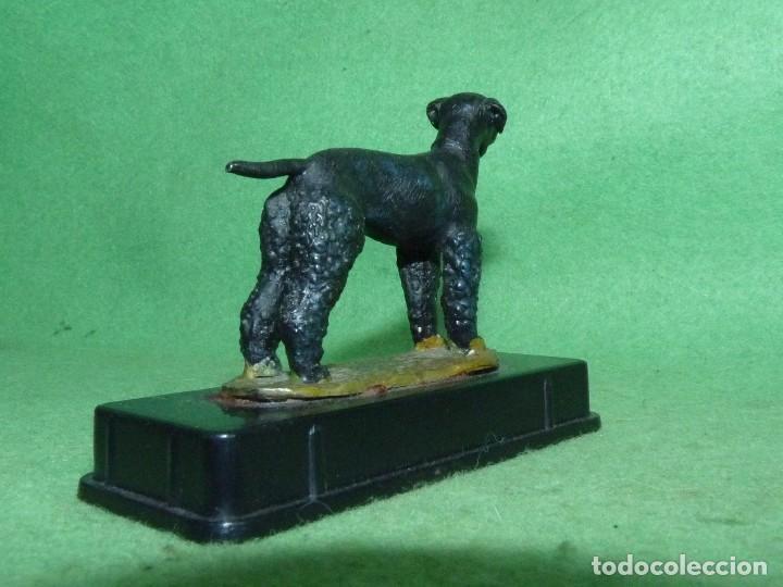 Juguetes Antiguos: Rarisima figura plomo perro Terrier Gales caza miniploms Alymer años 70 cazador soldado plomo - Foto 3 - 94116145