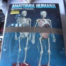 Juguetes antiguos - GRAN CAJA CON JUEGO ANATOMIA HUMANA - SERIMA - NUEVO SIN USAR Y COMPLETO - IMPECABLE - 49560477