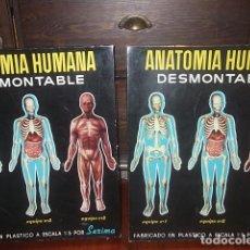 Juguetes antiguos: ANATOMIA HUMANA DE SERIMA Nº1 Y 2 NUEVOS RESTO TIENDA,BARATOS. Lote 117147551
