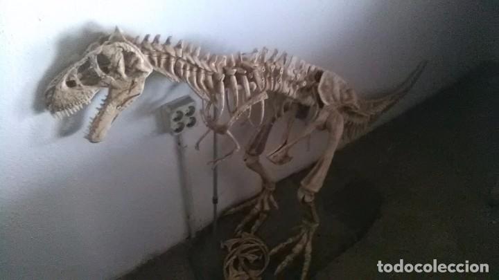 Modelos a escala: Dinosaurio, grandes dimensiones palentologia - Foto 3 - 248002635
