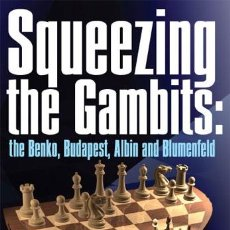 Coleccionismo deportivo: AJEDREZ. CHESS. SQUEEZING THE GAMBITS: THE BENKO, BUDAPEST, ALBIN AND BLUMENFELD - KIRIL GEORGIEV. Lote 49257214