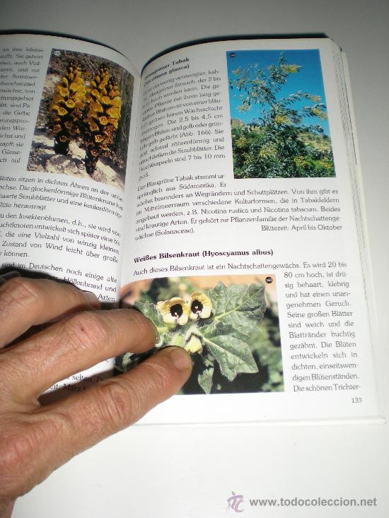 Libros: libro en aleman plantas en su habitad de la costa blanca pflanzen in ihren lebensraumen an der cos - Foto 2 - 33516868