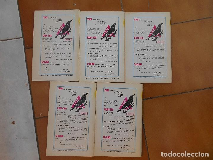 Libros: 5 libros,le monde oiseux,numeros,1,5,7,8 y 12,año 1973,aleman - Foto 8 - 107919387