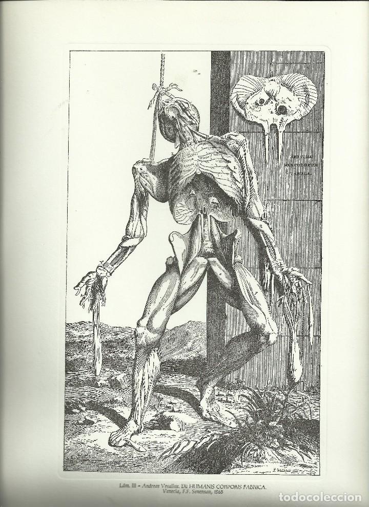 EL GRABADO EN LA HISTORIA DE LA MEDICINA, UN TOTAL DE 39 GRABADOS (Libros Nuevos - Ciencias, Manuales y Oficios - Anatomía )