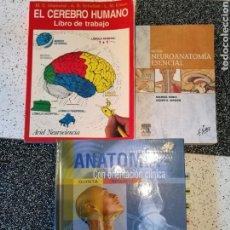 Libros: LIBROS DE ANATOMÍA CLÍNICA Y NEUROANATOMIA. ED. PANAMERICANA, NETTER Y ARIEL NEUROCIENCIA.. Lote 109201098