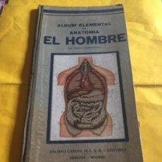 Libros: ALBUM DE ANATOMIA ÁLBUM ELEMENTAL DE ANATOMÍA EL HOMBRE, DALMAU CARLES PLA. Lote 121511691