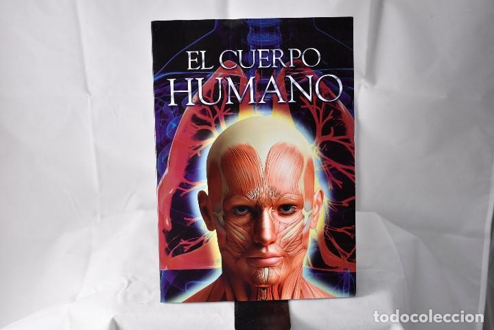 EL CUERPO HUMANO (Libros Nuevos - Ciencias, Manuales y Oficios - Anatomía )
