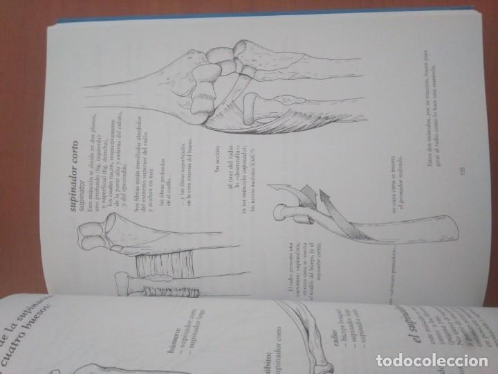 Libros: Anatomía para el movimiento Tomo I babdine Caláis Germain - Foto 2 - 155958842