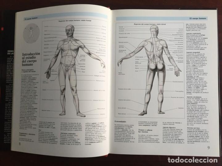 Libros: Atlas de Anatomía. Colección gran enciclopedia de las ciencias. diccionario ilustr del cuerpo humano - Foto 4 - 179538520