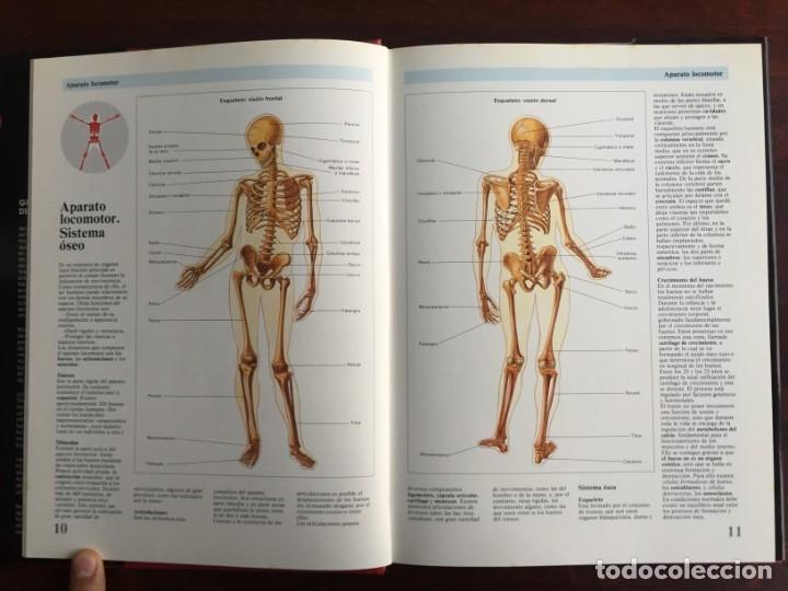 Libros: Atlas de Anatomía. Colección gran enciclopedia de las ciencias. diccionario ilustr del cuerpo humano - Foto 5 - 179538520