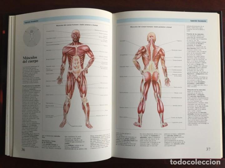 Libros: Atlas de Anatomía. Colección gran enciclopedia de las ciencias. diccionario ilustr del cuerpo humano - Foto 10 - 179538520