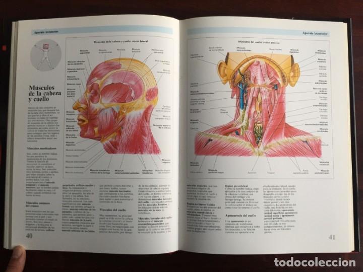 Libros: Atlas de Anatomía. Colección gran enciclopedia de las ciencias. diccionario ilustr del cuerpo humano - Foto 11 - 179538520