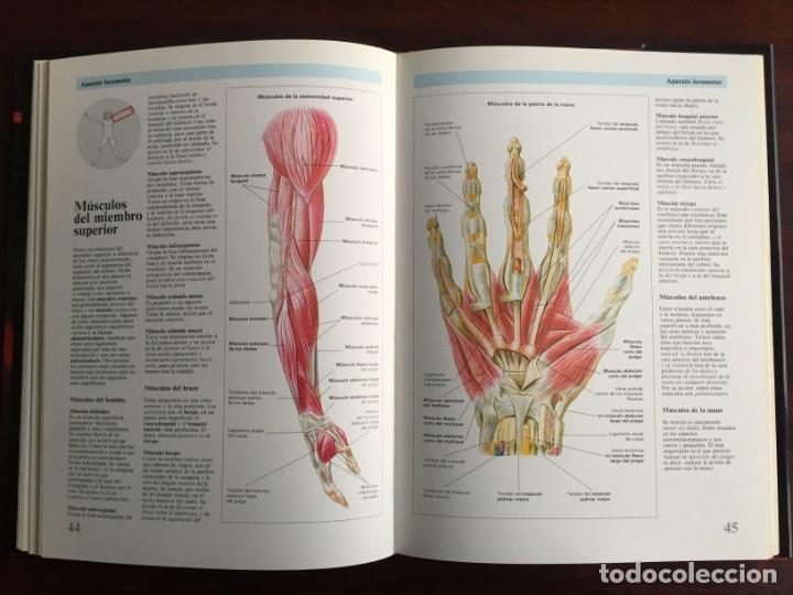 Libros: Atlas de Anatomía. Colección gran enciclopedia de las ciencias. diccionario ilustr del cuerpo humano - Foto 12 - 179538520