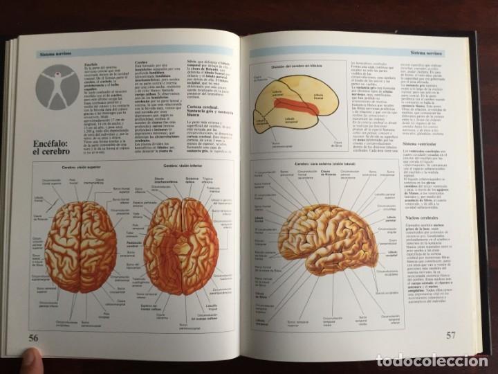 Libros: Atlas de Anatomía. Colección gran enciclopedia de las ciencias. diccionario ilustr del cuerpo humano - Foto 14 - 179538520