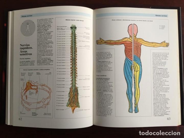 Libros: Atlas de Anatomía. Colección gran enciclopedia de las ciencias. diccionario ilustr del cuerpo humano - Foto 15 - 179538520