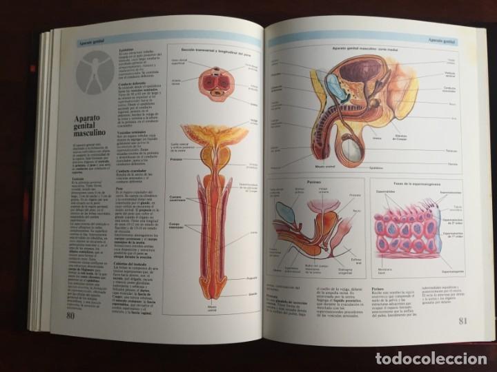 Libros: Atlas de Anatomía. Colección gran enciclopedia de las ciencias. diccionario ilustr del cuerpo humano - Foto 19 - 179538520